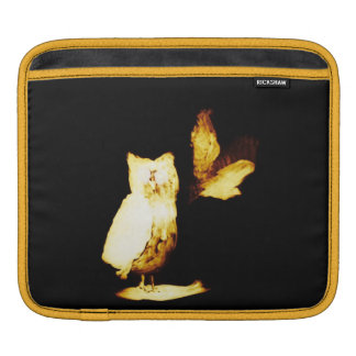 Glowing at Night Bird Art Abstract Owls Sleeve For iPads