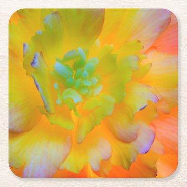 USA Themed Glowing Begonia Blossom | Seabeck, WA Square Paper Coaster