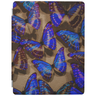 Glowing Butterfly Specimens iPad Smart Cover