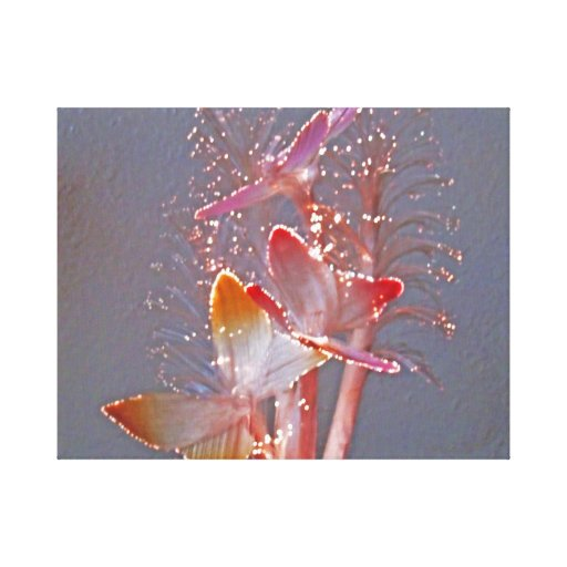 Glowing Fiber Optic Butterflies Stretched Canvas Print