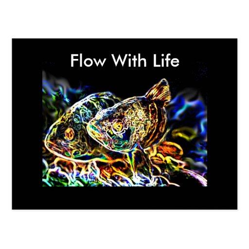Glowing Fish from Junglewalk.com Postcards