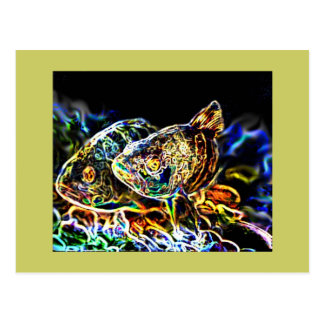 Glowing Fish from junglewalk Postcard