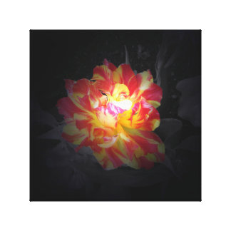 Glowing Flower Canvas