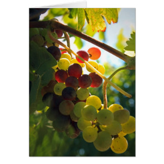 Glowing Grapes Card