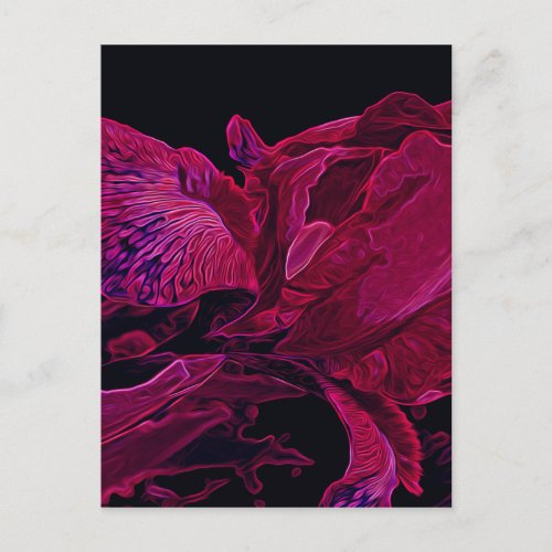 Glowing Iris in Deep Magenta and Black Postcard