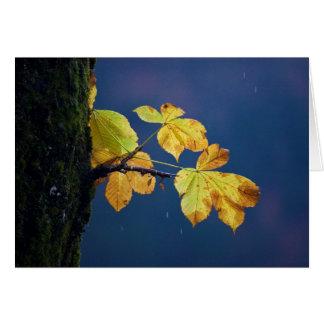 Glowing leaves card