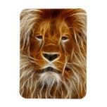 Glowing Lion Portrait Rectangle Magnets