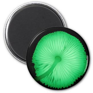 Glowing Mushrooms Magnets