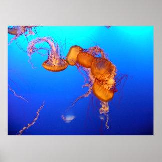 Glowing Orange and Yellow Jellyfish Poster