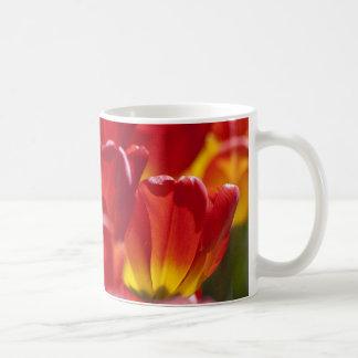 Glowing Orange Tulips Coffee Mugs