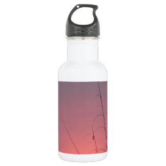 Glowing Pink and Purple Sunset Water Bottle