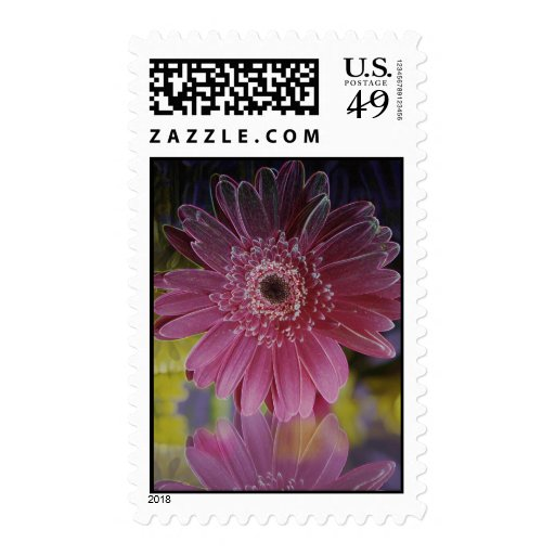 glowing pink gerbera daisy postage stamp