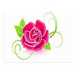 Glowing Pink Rose Postcards