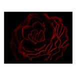 Glowing Rose Post Cards