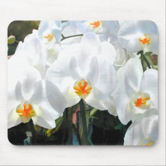 Glowing White Phalaenopsis Orchids Mouse Pad