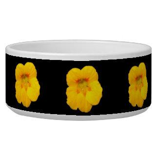 Glowing Yellow Nasturtium Dog Bowl