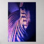 glowing zebras 09 print