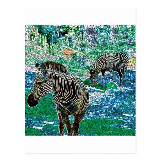 Glowing Zebras Postcard