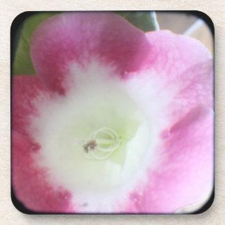 Gloxinia Blossom TTV Cork Coaster