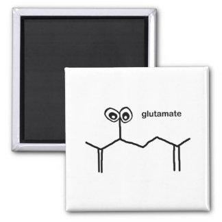 Glutamate Neurotransmitter Magnets