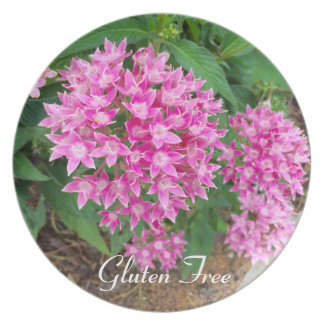 Gluten Free Pink Floral Plate