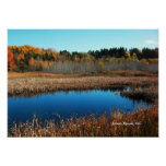 Glynmill Trail Marshlands Trees and Water, Canada Poster