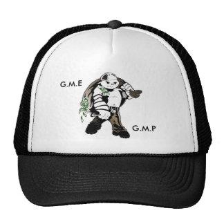 GME/GMP HAT