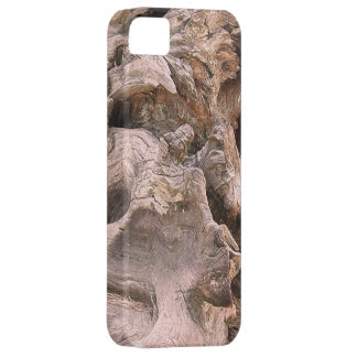 Gnarled Textured Bark  of the Giant Sequoia Tree iPhone SE/5/5s Case