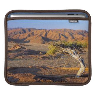 Gnarled Tree And Desert Lands, Richtersveld iPad Sleeve