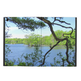 Gnarly Branch at Pond ~ iPad Air Cases