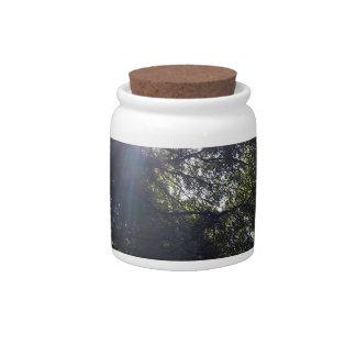 Gnarly oak. candy jars