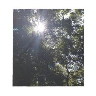 Gnarly oak. notepad