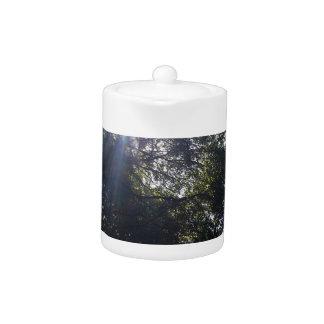 Gnarly oak. teapot