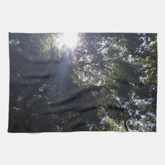 Gnarly oak. towel
