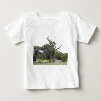 Gnarly Old Tree Baby T-Shirt