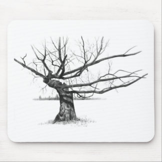 GNARLY OLD TREE: PENCIL REALISM ART MOUSE PAD