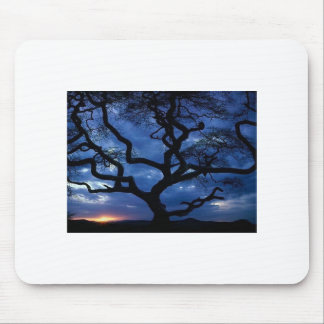 Gnarly Tree Mouse Pad