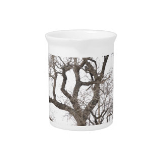 Gnarly tree drink pitcher