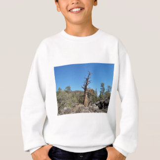 Gnarly Tree Sweatshirt