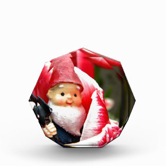Gnome Blossom Acrylic Award