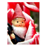 Gnome Blossom Postcard
