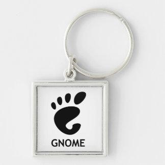 Gnome (desktop environment) keychain