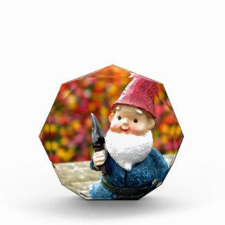 Gnome Field II Acrylic Award