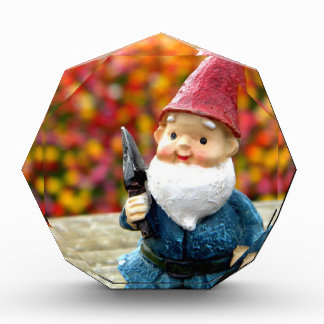 Gnome Field II Award