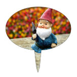 Gnome Field II Cake Toppers