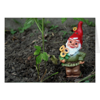 Gnome Get Well Card