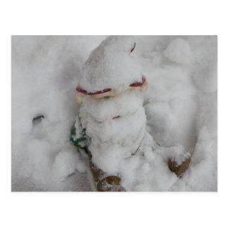 Gnome in Snow. Postcard