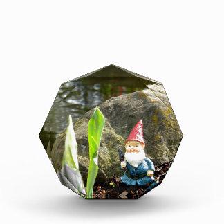 Gnome Pond Award