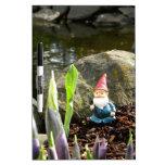 Gnome Pond Dry Erase Whiteboards