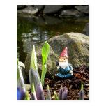 Gnome Pond Postcard